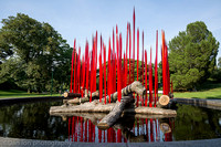 NYBG 'Dale Chihuly', Red Reeds on Logs