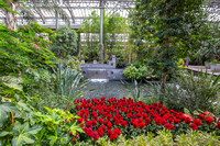Longwood Gardens, conservatory