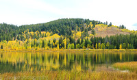 September foliage by Jackson Lake, Grand Teton National Park