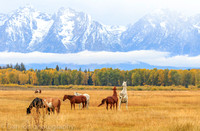 Jackson Hole ranch, Grand Teton National Park